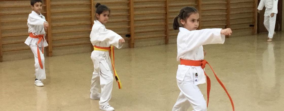karate colegio buen consejo